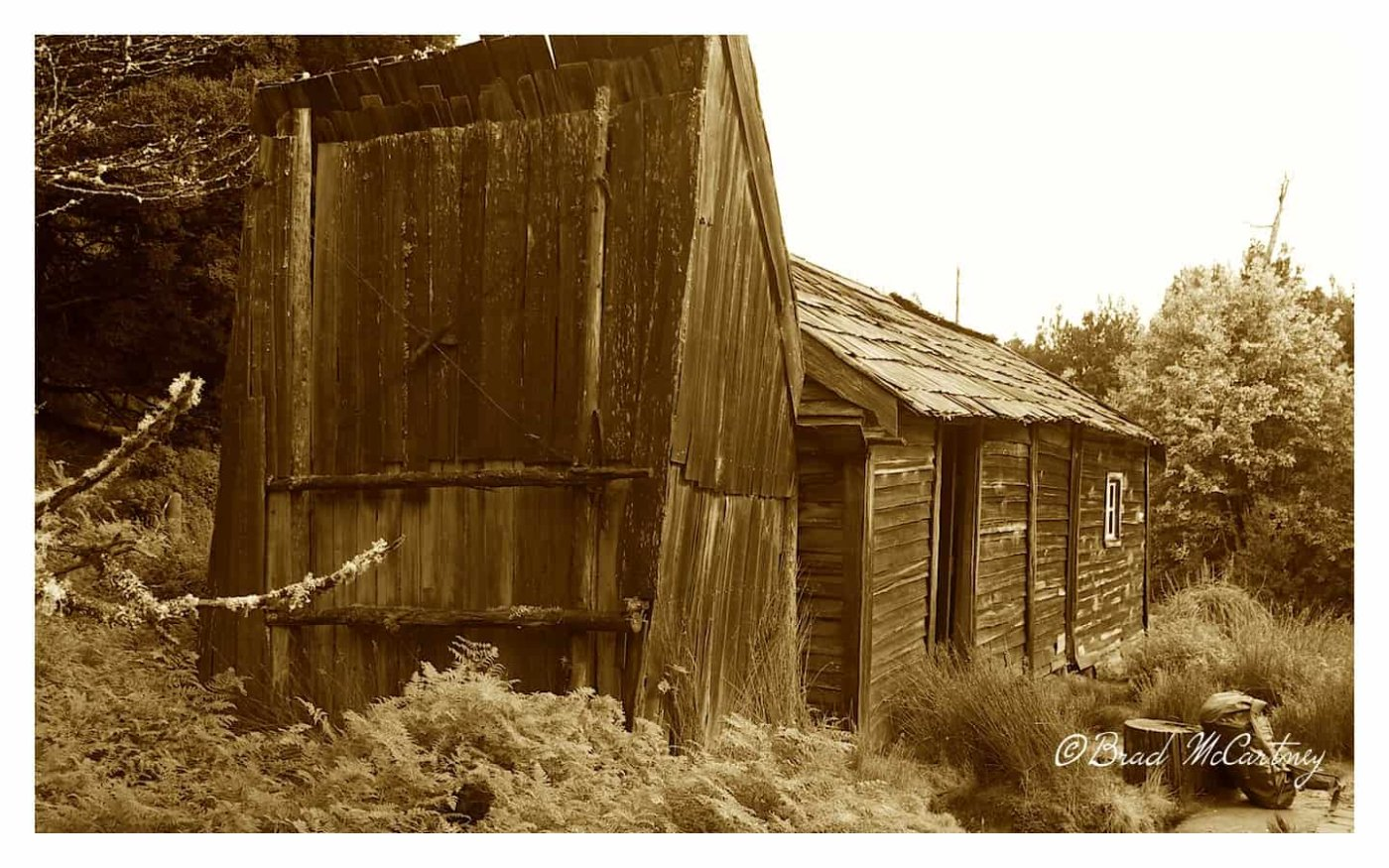 old hut on the Overland Track