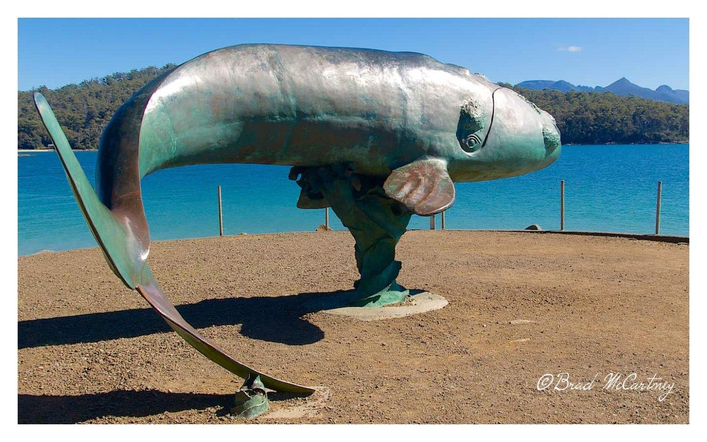 Whale Sculpture near Cockle Creek