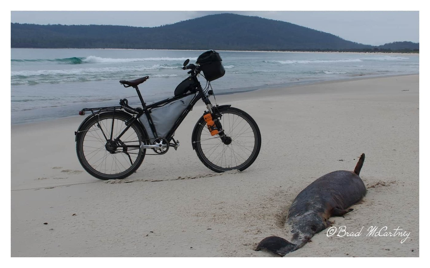 Cycling on the beach at Maria Island