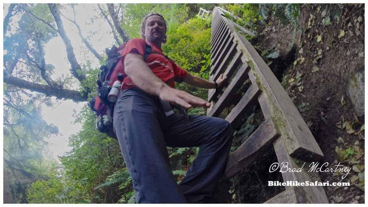 West Coast Trail ladders