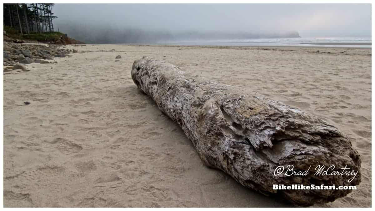 Rolling fog at sunset on Cape Lookout Beach