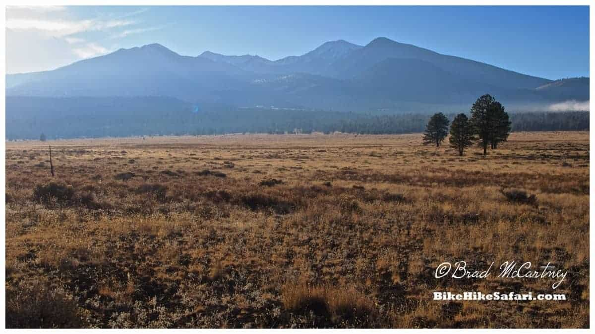 San Francisco peaks, once in the shape of a volcano before it exploded spewing ash 1000s of kilometers