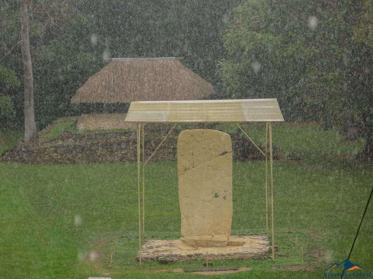 Tropical rainstorm