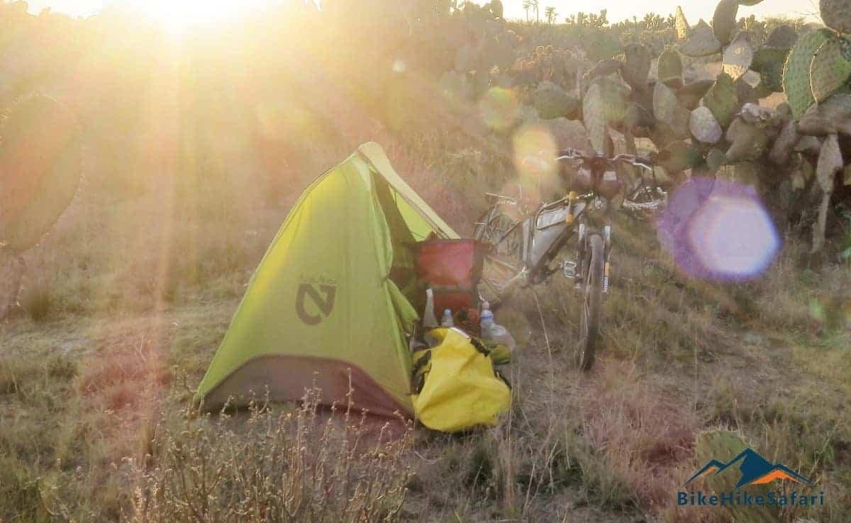 cactus camping