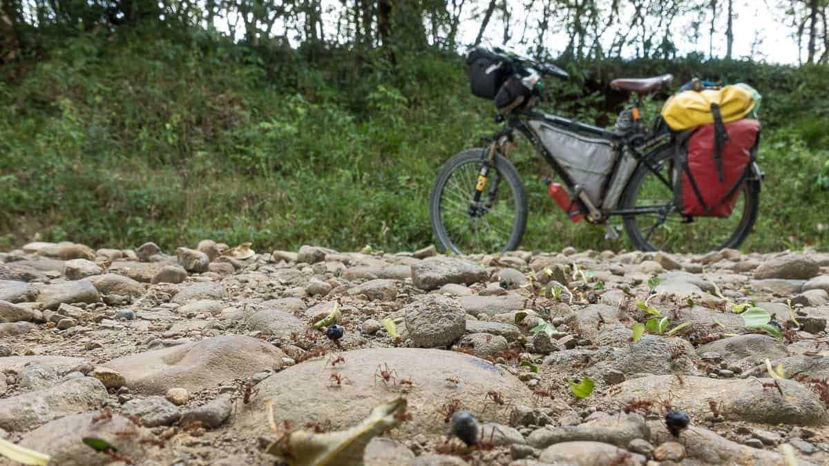 bicycle touring rincon
