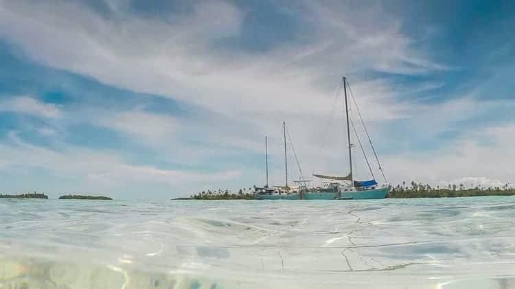 Wildcard Sailing