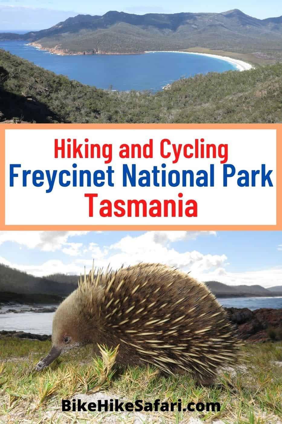 Hiking and Cycling Freycinet National Park Tasmania