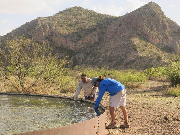 Best Backpacking water filter for the desert