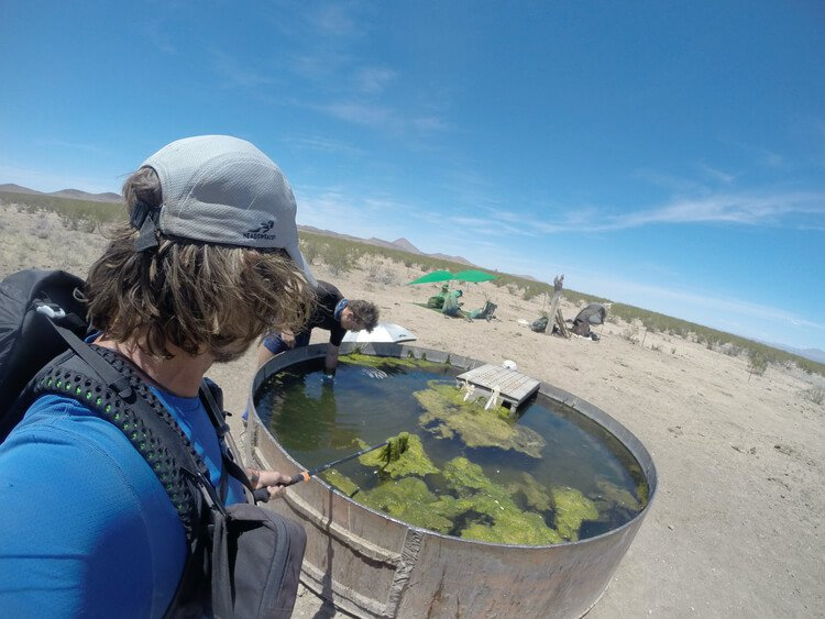 Need a water filter for bad water in the desert